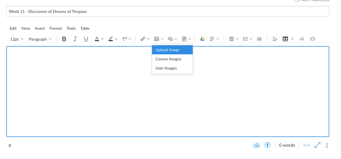 Screenshot of the Rich Content Editor with the image menu open